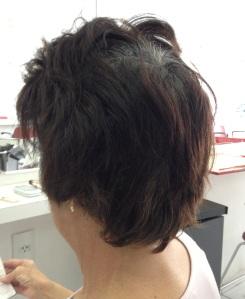 cabelo com raiz0